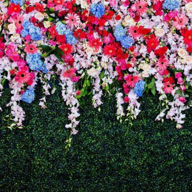 X-Frame Motivhintergrund Garden Wall