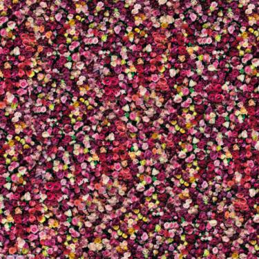 X-Frame Motivhintergrund Flower Wall