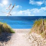 X-Frame Motivhintergrund Beach Style