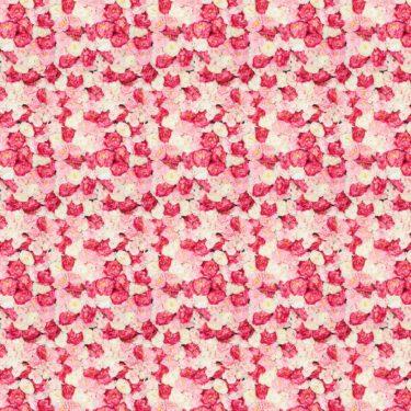 X-Frame Motivhintergrund Fine Rose Wall